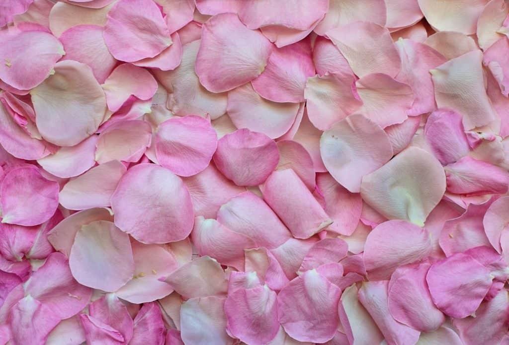 mặt nạ collagen hoa hồng