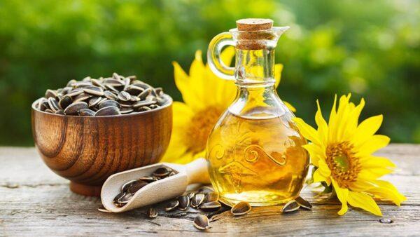 Vitamin e và dầu hướng dương