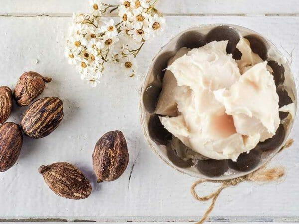 cách làm kem dưỡng da hiệu quả bằng bơ hạt mỡ