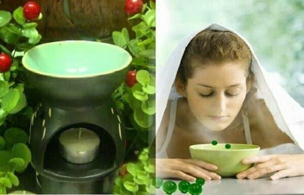 cách làm tinh dầu tràm trà