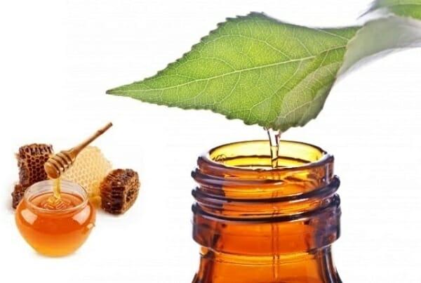 tinh dầu tràm trà nguyên chất