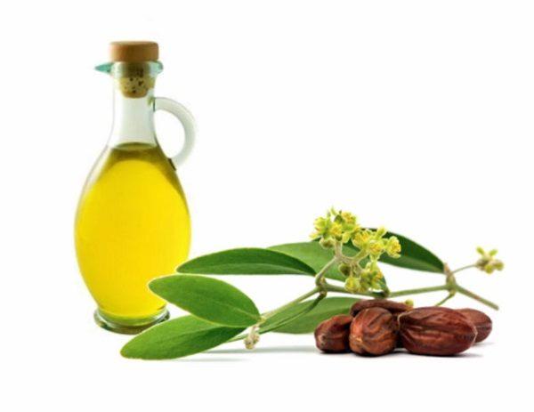 công dụng của hydrogenated jojoba oil