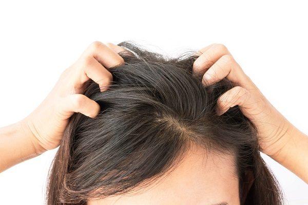 cách dùng tinh dầu jojoba chăm sóc tóc