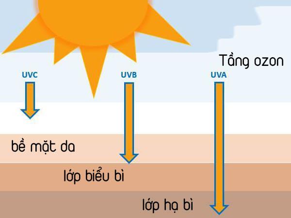 Màng lọc tia UVB và UVA