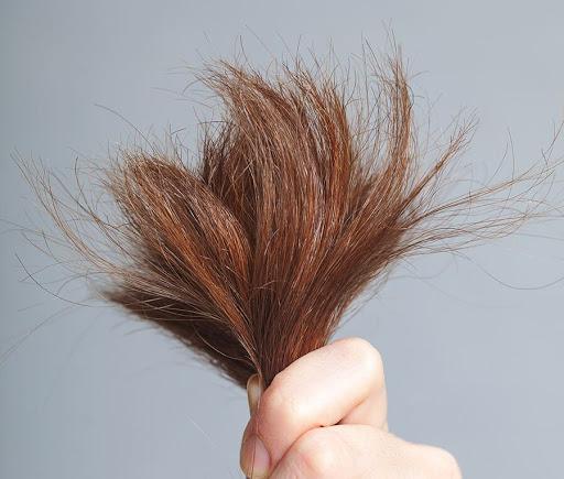 tóc xơ hư tổn được khắc phục bằng dầu dừa