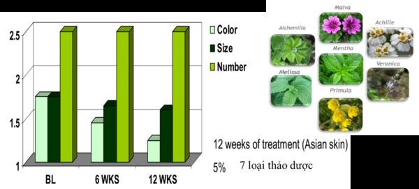 tác dụng giảm đốm nâu của chiết xuất 7 loại hoa thảo dược